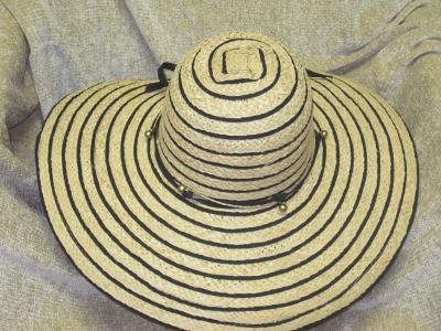 Sun Hat w/Stripest